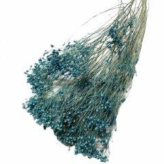 Broom Bloom Parisian Blue
