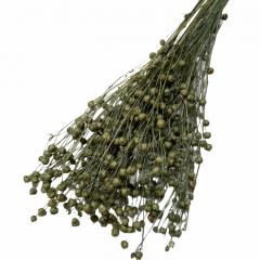 Gedroogde Lino vlas Ice Green