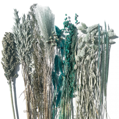 Droogbloemen mix Pauwgroen, 65cm