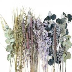 Droogbloemen mix Setaria grijspaars