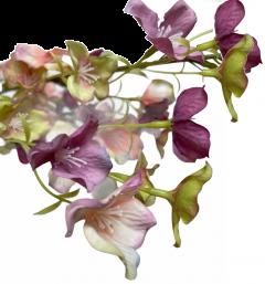Tak met hortensia bloemetjes, creme-lila-lichtroze, 90cm