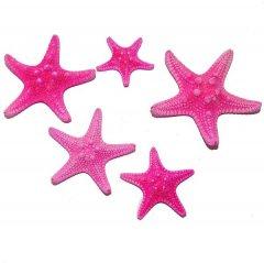 Roze zeesterretjes, 3cm