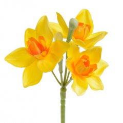 Narcissus  geel, 42cm