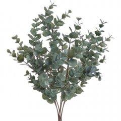 Bundel Eucalyptus, 42cm