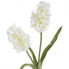 Hyacint wit, 44cm