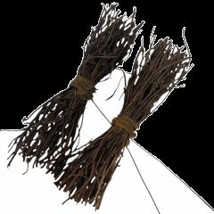 Twee roetjes met fijne twijgjes, 10cm