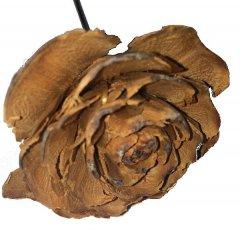 Cedar roos naturel op ijzerdraad, Ø4cm