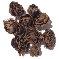 Cedar roos, Ø 3-5cm, 10 stuks