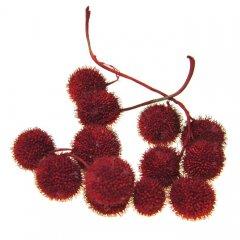 Plataanballetjes warm rood