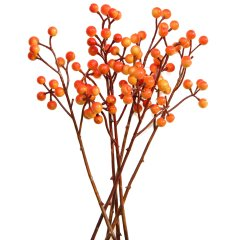 6 Takjes met oranje besjes, 18cm