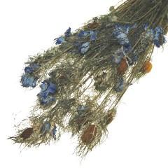 Gedroogde Nigella blue