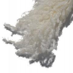 Pampasgras Gebleekt, 80cm