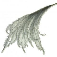 Stipa Feather Grijsblauw