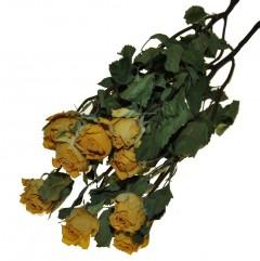Gedroogde gele roosjes, 45cm