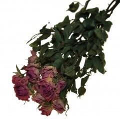 Gedroogde roze roosjes, 45cm