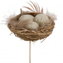 Kievitseieren in mini nest ,4cm