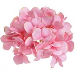 Zalmroze hortensia, 18cm