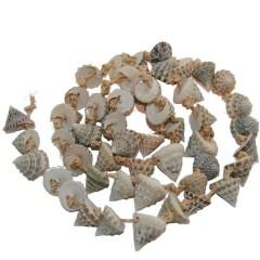 Turong schelpenslinger, 1m
