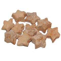 Sterretjes van cocos white-wash, 10stuks