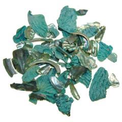 Abalone chips, 100 gram