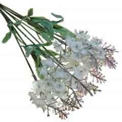 Witte lavendel, 45cm
